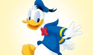 Donald_FC_ADULT_900_540_1